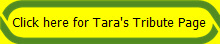 Click here for Tara's Tribute Page