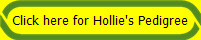 Click here for Hollie's Pedigree